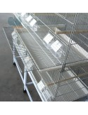Batteria gabbie per uccelli allevamento esposizione