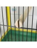 Voliera pappagallini