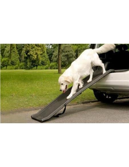 Rampa auto per cani