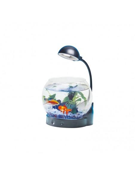 Mini acquario con illuminazione LED