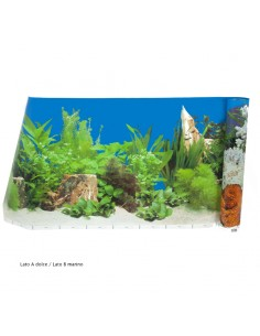 Carta decorativa double-face acquario