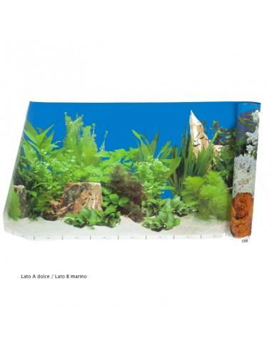 Carta decorativa double-face acquario