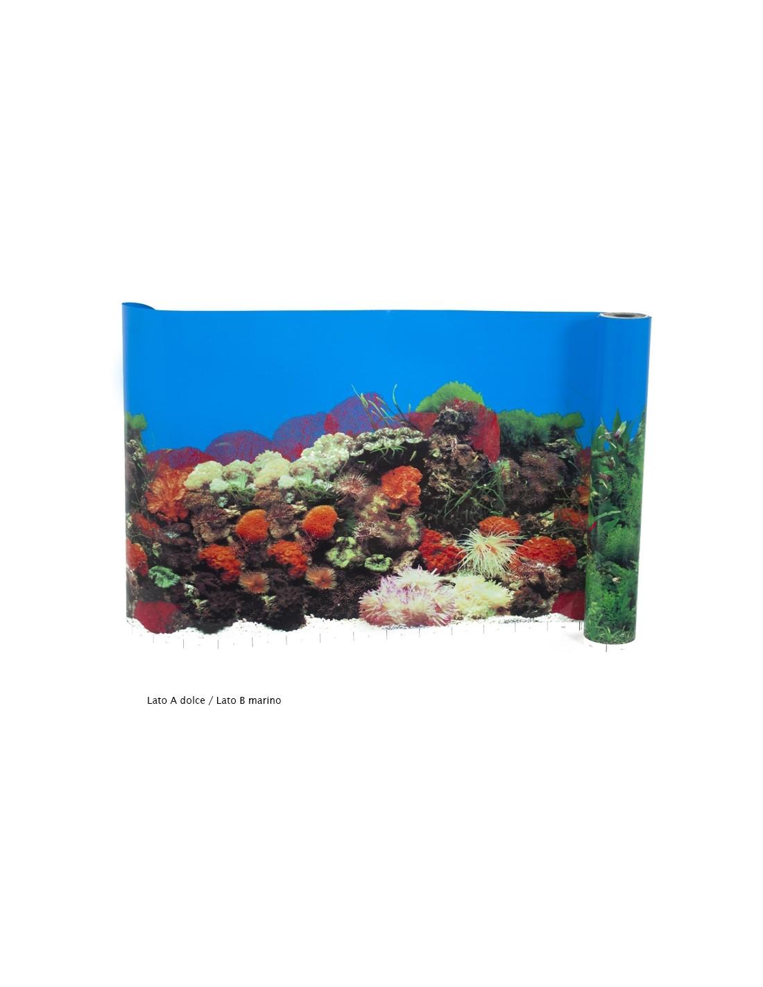 Carta decorativa acquario for Acquario tartarughe vendita