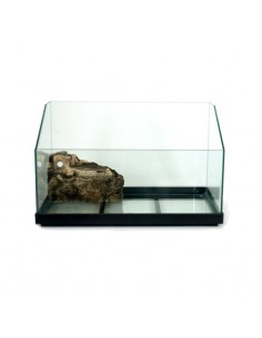 Tartarughiera in vetro 50x24