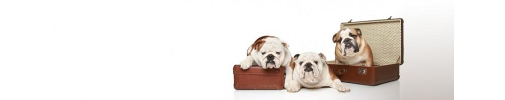 Trasportini per cani e per gatti