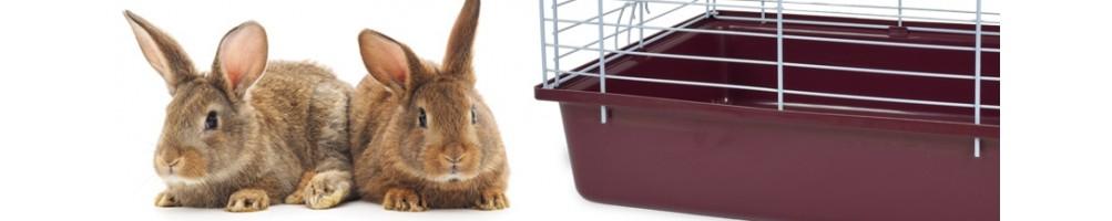 Gabbia conigli