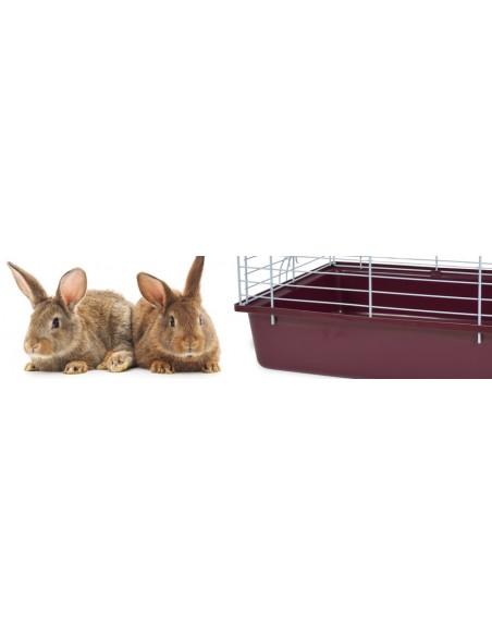 Gabbie per conigli